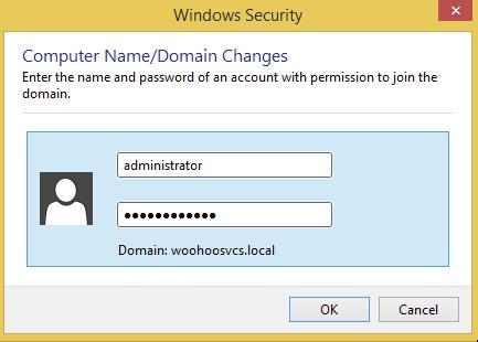 Domain Administrator Password