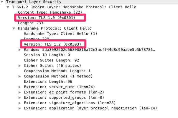 TLS Client Hello